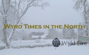 vk-blog-title-wyld-times