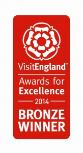 VE Awards for Excel Port 2014_Bronze Red